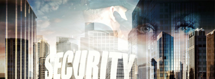 Website: MSM Security Service & Consulting
