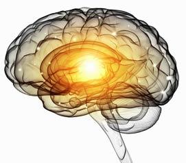 Neuro-Webdesign